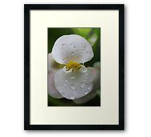 white & yellow Framed Print