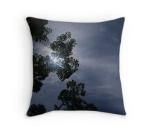 looked up Throw Pillow