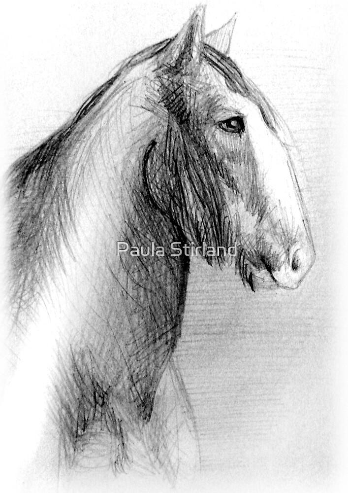 Anne's Portrait by Paula Stirland
