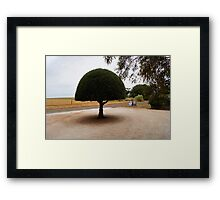 The Dome Framed Print