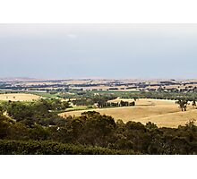 Clare Valley Photographic Print