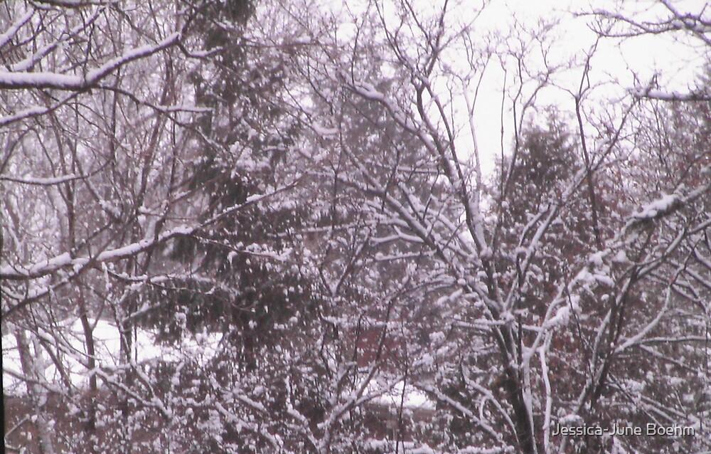 Winter Wonderland by Jessica-June Boehm
