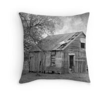 History Unknown Throw Pillow
