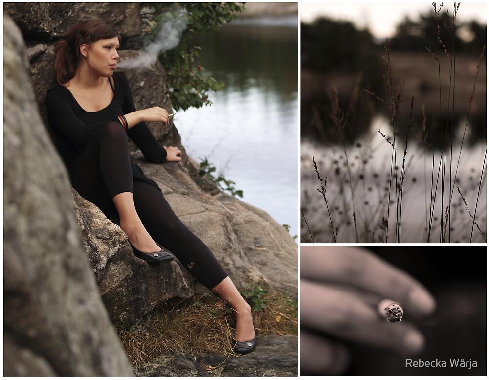 Dimmiga dagar by Rebecka Wärja
