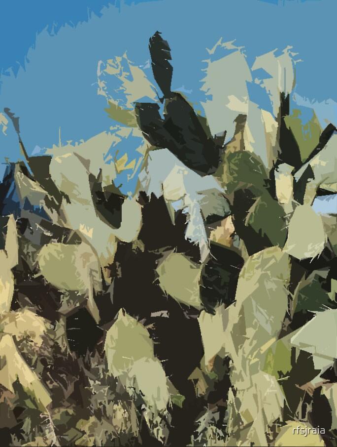 cactus  by rfsjraia