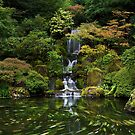 Causing a stir in the Japanese garden by Flibble