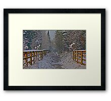 Frozen Winter Scene but where is Olaf? Framed Print