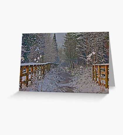 Frozen Winter Scene but where is Olaf? Greeting Card