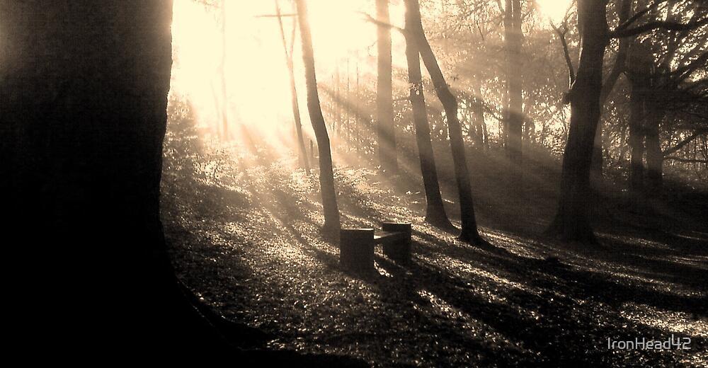 Judy woods 4.2 by IronHead42