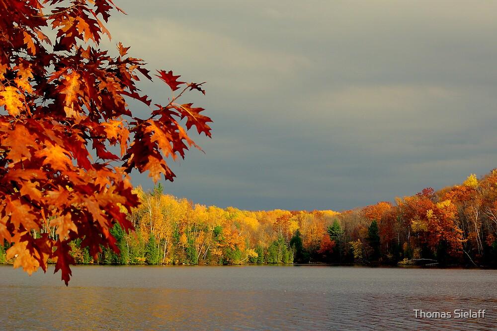 October Bay by Thomas Sielaff