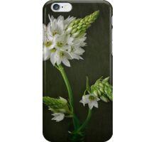 Sun Star iPhone Case/Skin