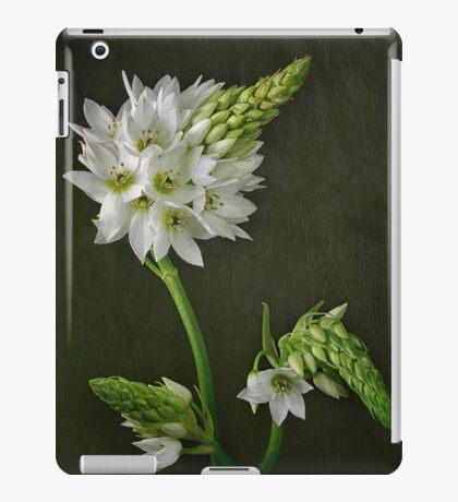 Sun Star iPad Case/Skin