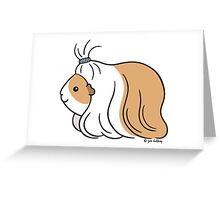 Guinea-pig Tail - long haired cavy Greeting Card