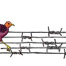 Lyre on the Wire by Elvedee