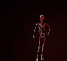 Standing Skeleton 2 by AnnArtshock