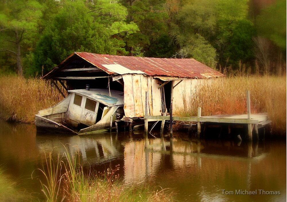The Sink, Near Hertford North Carolina by Tom Michael Thomas