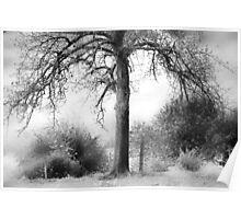 The Tree............ Poster