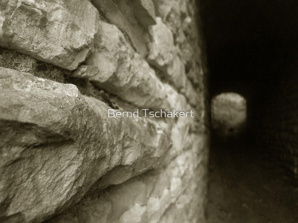 The Tunnel  by Bernd Tschakert