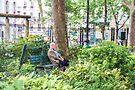 Man on a Bench by Elaine Teague