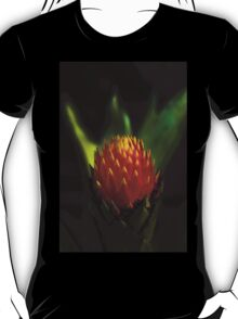 Cactus Flower in Loja Ecuador T-Shirt