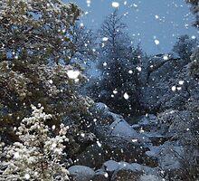 night snow by rfsjraia