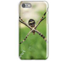 Orb Weaver Spider in a Spider Web iPhone Case/Skin
