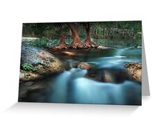 Shades of Evening Greeting Card
