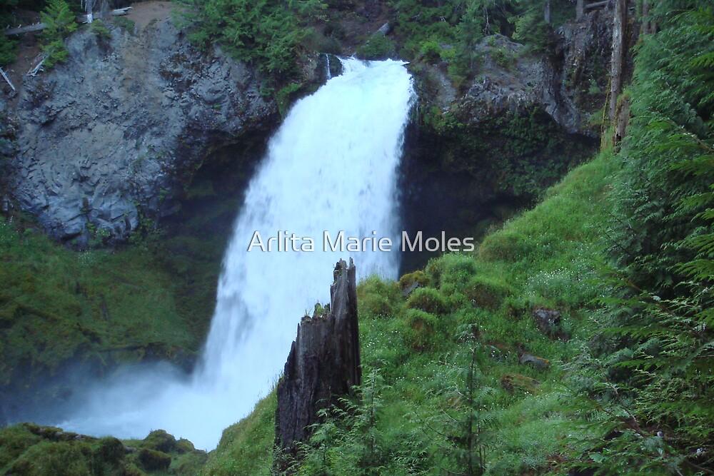 Shalie Falls by Arlita Marie Moles
