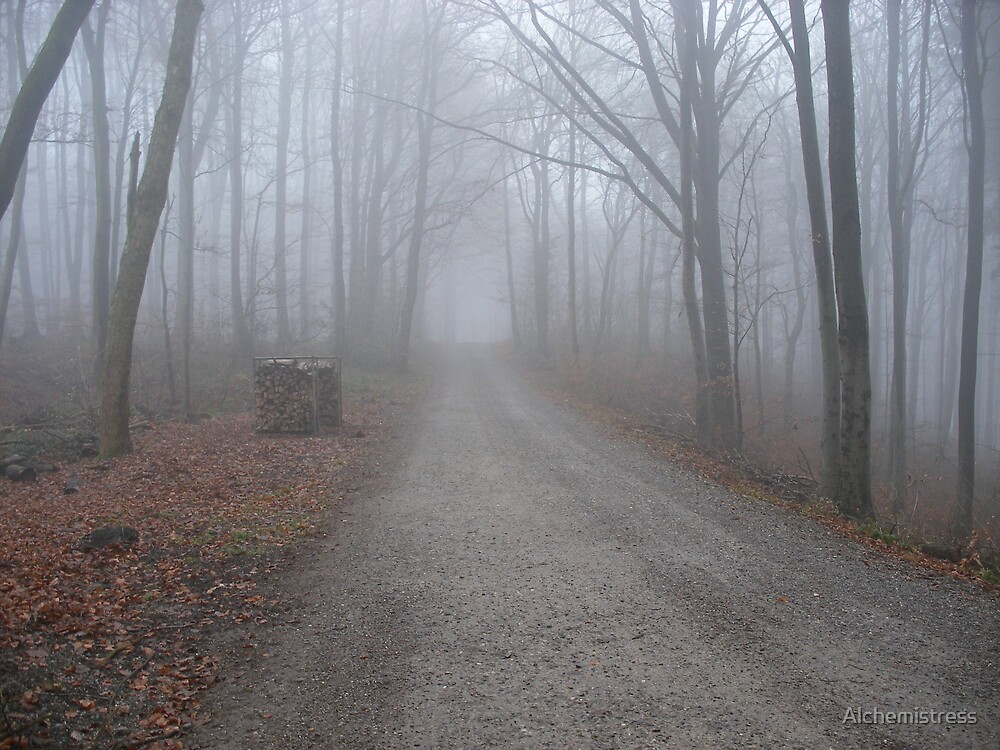 Path in the Fog by Alchemistress