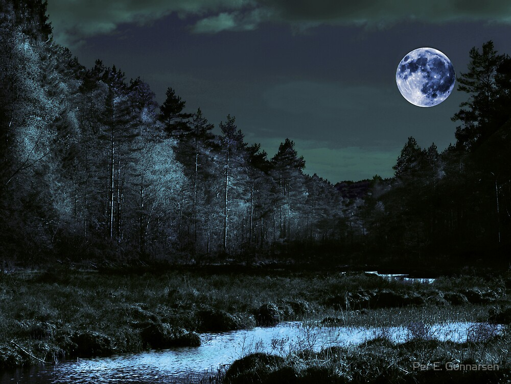 Bluemoon by Per E. Gunnarsen