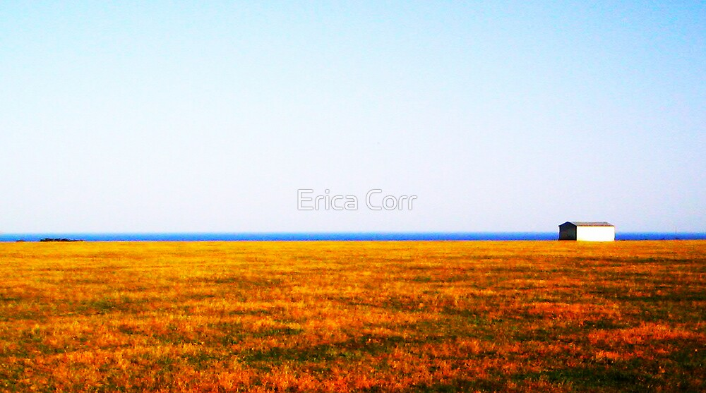 Serenity by Erica Corr