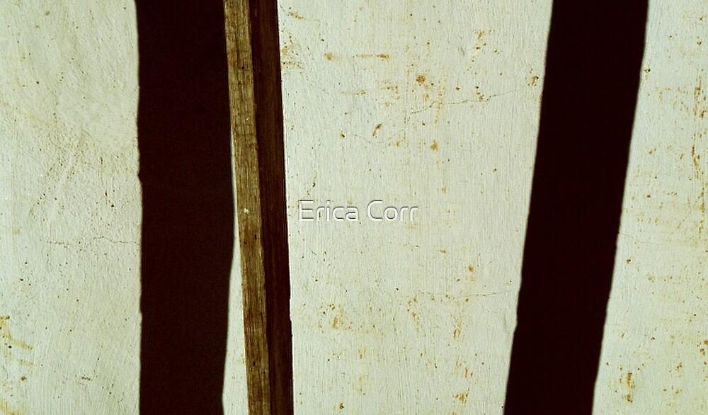 II I by Erica Corr