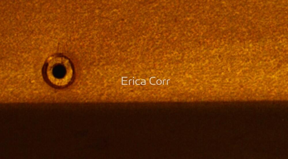 o by Erica Corr