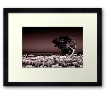 Swept Away Framed Print