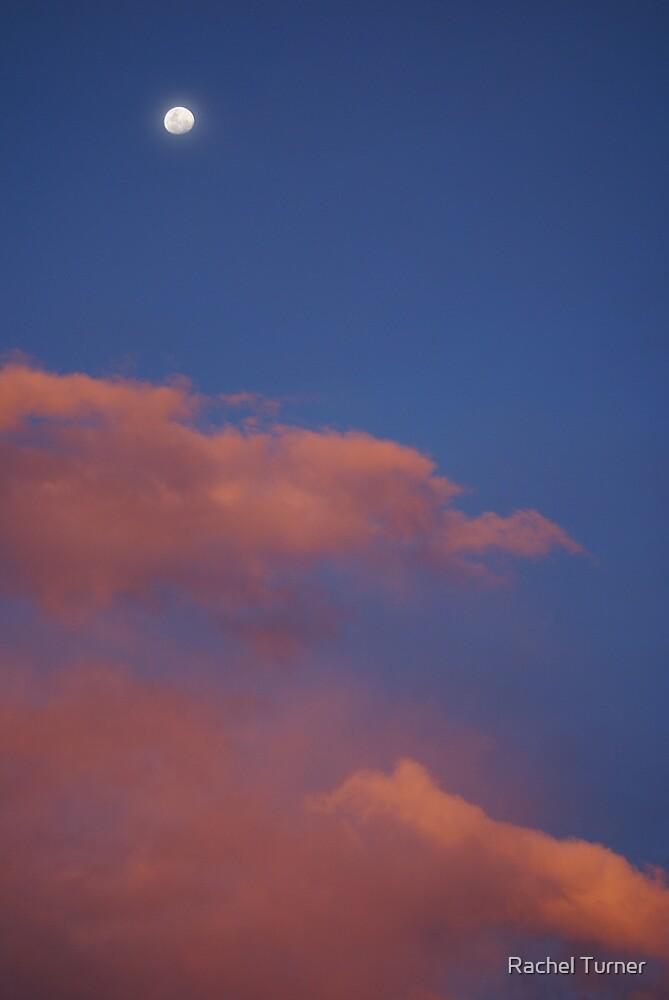 pink moon by Rachel Turner