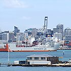 First time visit to Auckland........!! by Roy  Massicks