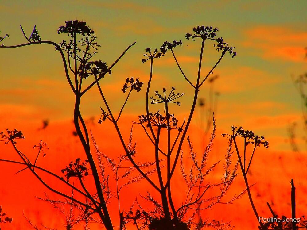 Autumn Sunrise by Pauline Jones