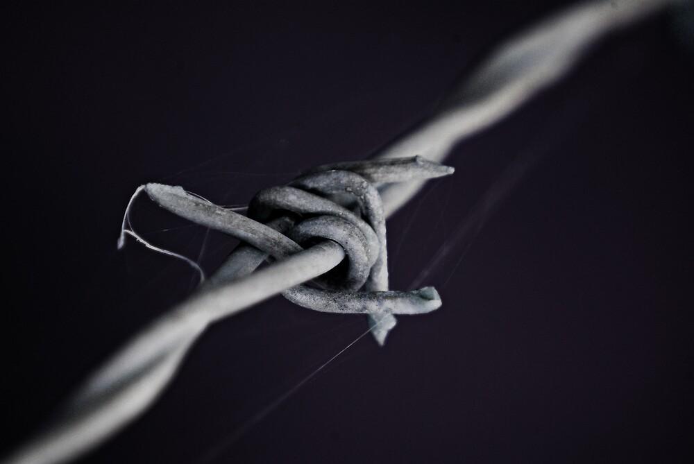 barb wire by Robert Kiesskalt
