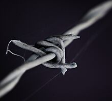 barb wire by Robert Kiesskalt