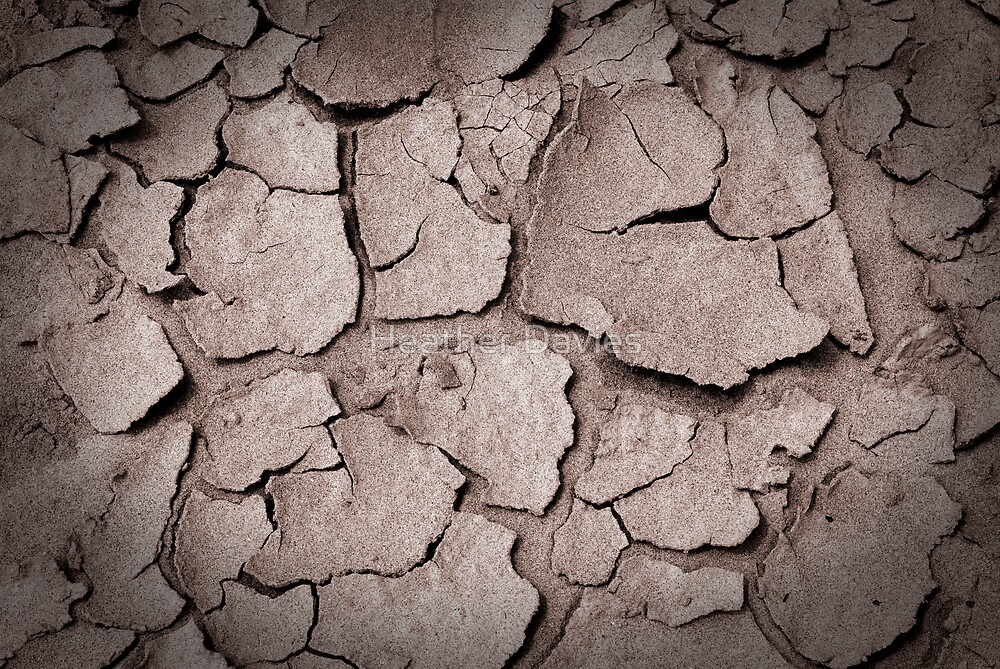 Parched by Heather Davies