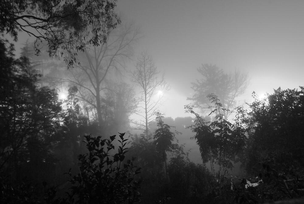 black and white fog scene by Robert Kiesskalt