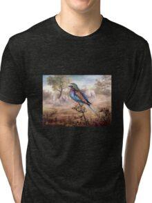 African Roller Tri-blend T-Shirt