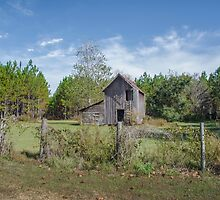 Outbuilding by designingjudy