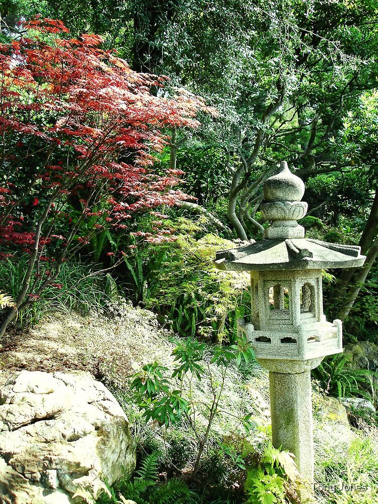 Gardens of the Villa Rothschild, Cap Ferrat, South of France by Tony Jones