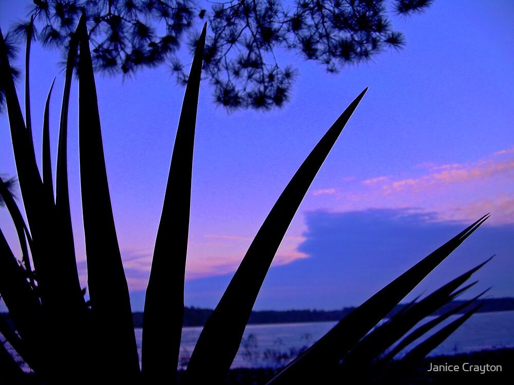 Sunset on Lake Conroe by Janice Crayton