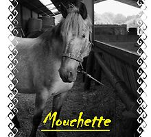 It's beautiful horse by limouche