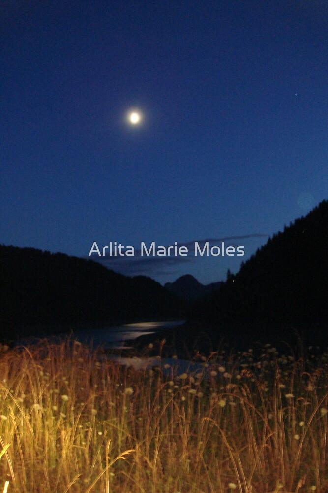 Summer Moon by Arlita Marie Moles