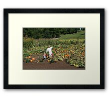 Pumpkin Patch Friends Framed Print