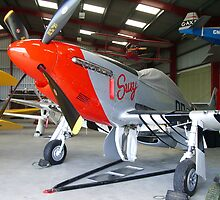 Susy P51D (Photo) by Woodie