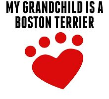 My Grandchild Is A Boston Terrier by kwg2200